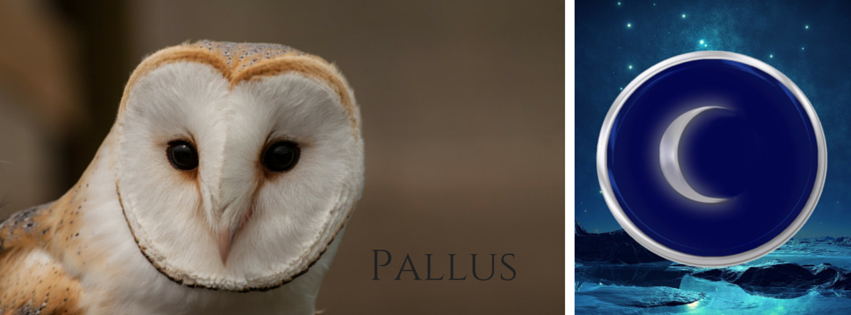 Pallus is a Barn Owl soul