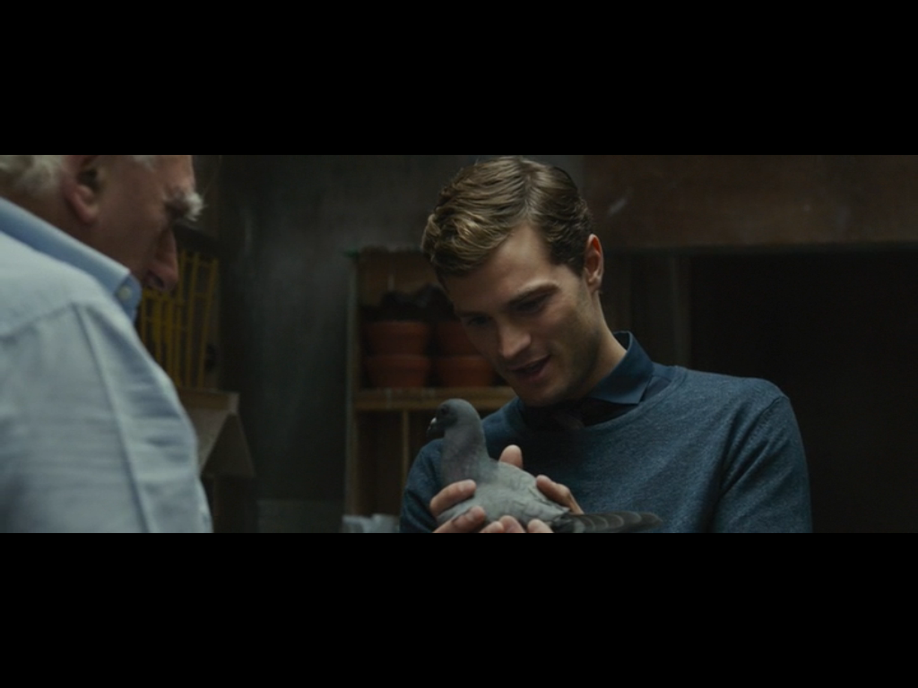 The main character, played by Jamie Dornan, getting a lesson in pigeons in Racing Hearts