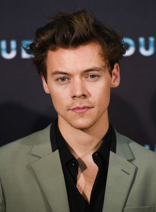 Harry Styles as Harry Styles (who saw that one coming!)