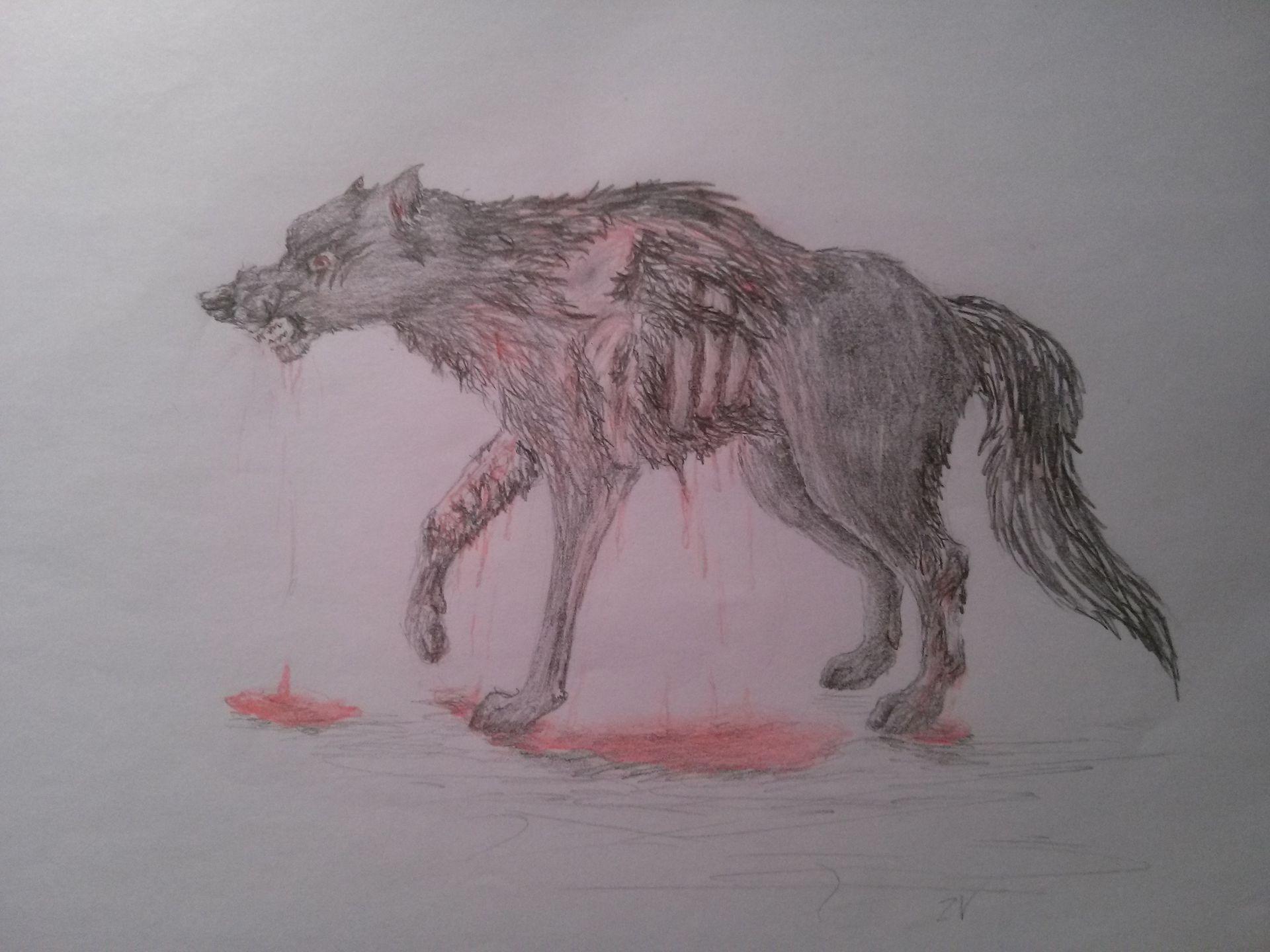 Kresby Zly Vlk Zraneny Vlk Wattpad