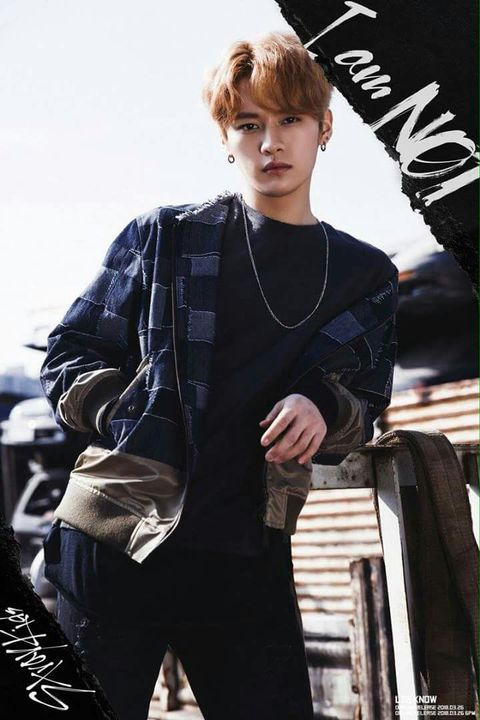 Stray Kids - Lee Min-ho(Lee Know) - Wattpad