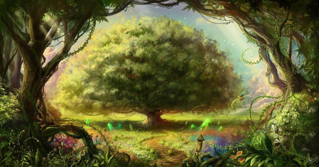 древо жизни картинка фон возился мячом, придумывая