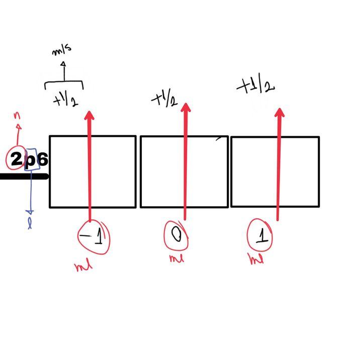 El chicx (xd) de la nota decía que no se sentía completo, que a su orbital le faltaba -1/2, o sea, para completar en ese nivel de energía (n=2) los 6 electrones que caben