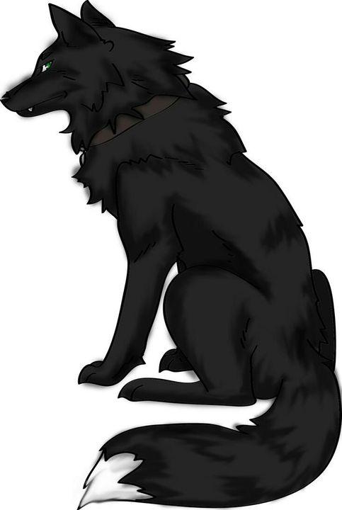 Черный волк аниме картинки
