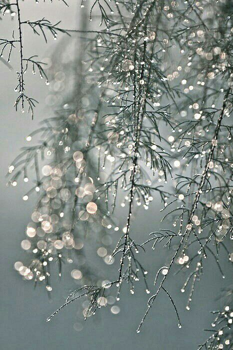 You bring wintry rains that bestowPearly pellets of gelidity!How to better describe you?