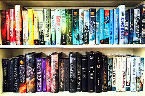 How To Be A Book Nerd Bookshelf Ocd Wattpad