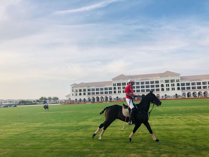 Al Habtoor's SAVANT app features three training modes, as well as a test mode with score analysis and sharing