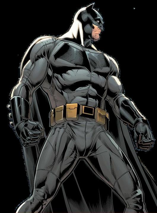 batman male reader x my hero academia discontinued  bio