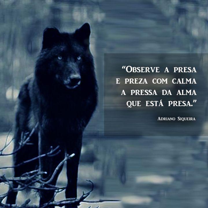 Seja um como um lobo