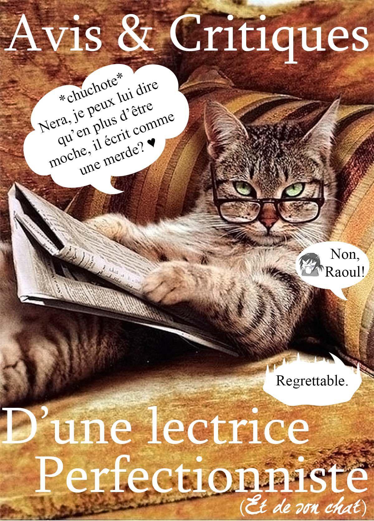 J'ai changé la couverture du livre, qu'en pensez-vous ? Des commentaires de Raoul le chat, glissés au milieu de mes propres critiques vous plairaient-ils ?