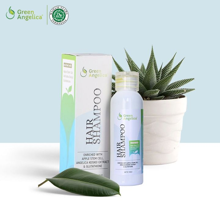 Green Angelica Hair Shampoo merupakan shampo alami yang diformulasikan  khusus untuk mengatasi rontok 07e5b278b1
