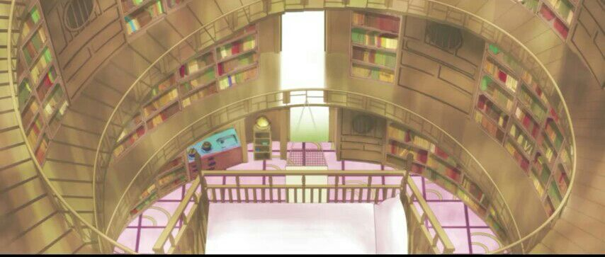Each wall had shelves and shelves of books of all kind