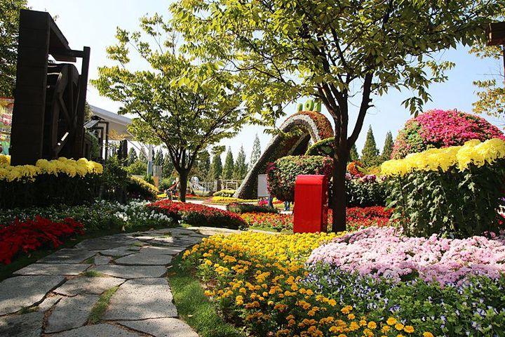 Travel Korea! - Ilsan Lake Park (일산호수공원) - Wattpad